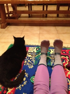 Yoga for two: Felix and me.