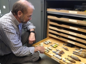 Doug Shedd and Emily Smith give me a tour of the amazing acquisitions in the Natural History Collections.
